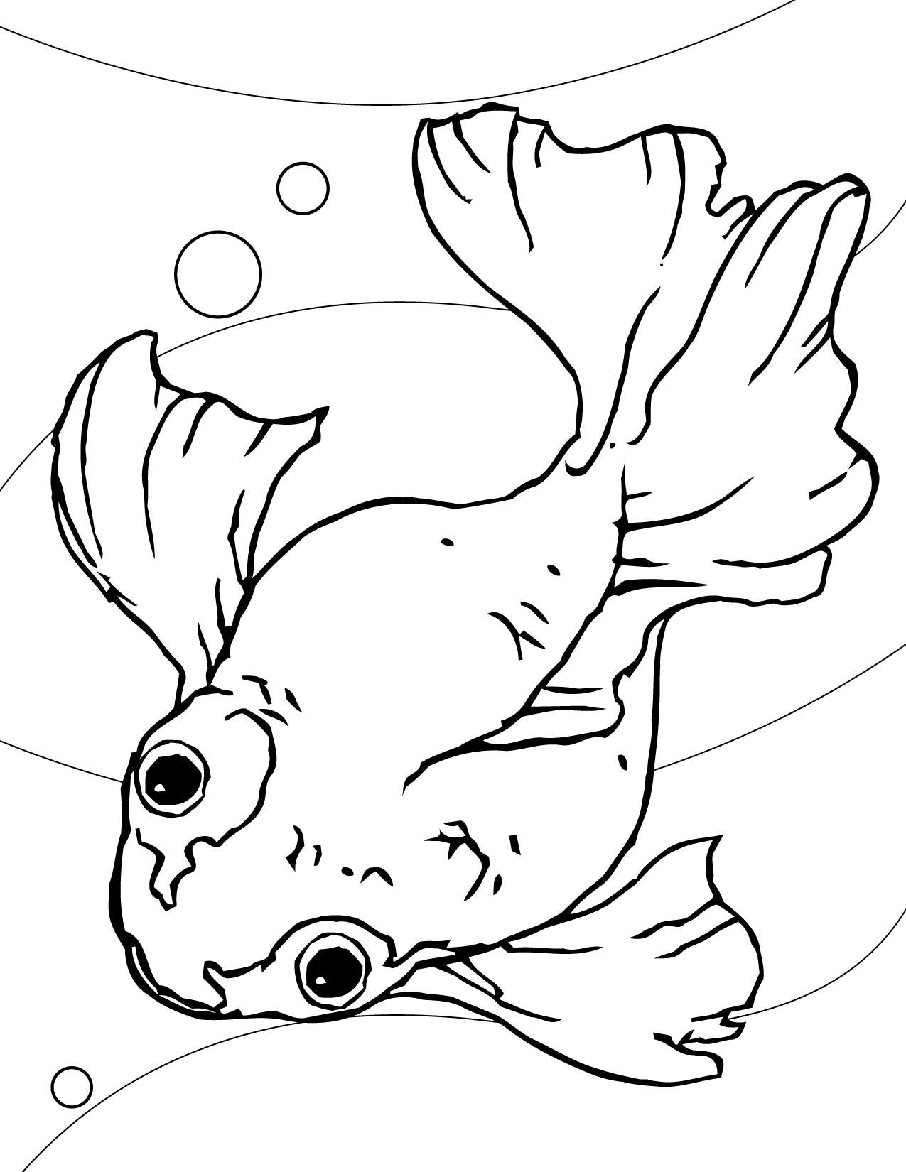 Free Printable Goldfish Coloring Pages For Kids