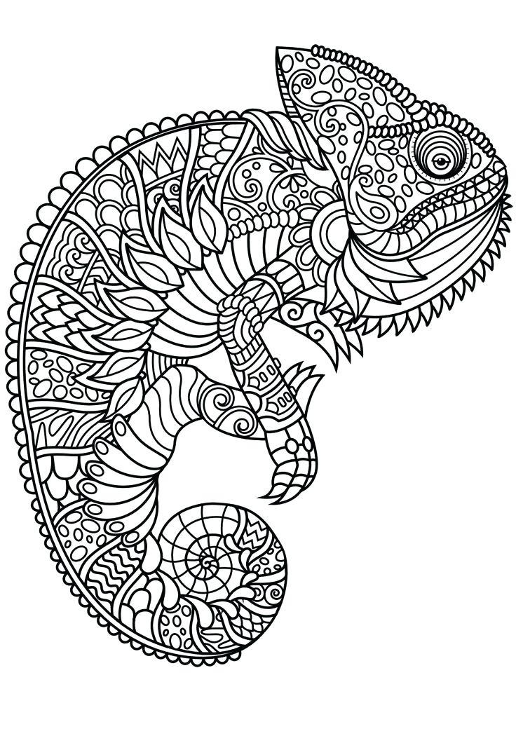 Squirrel Drawing Line Monkey Black Animal