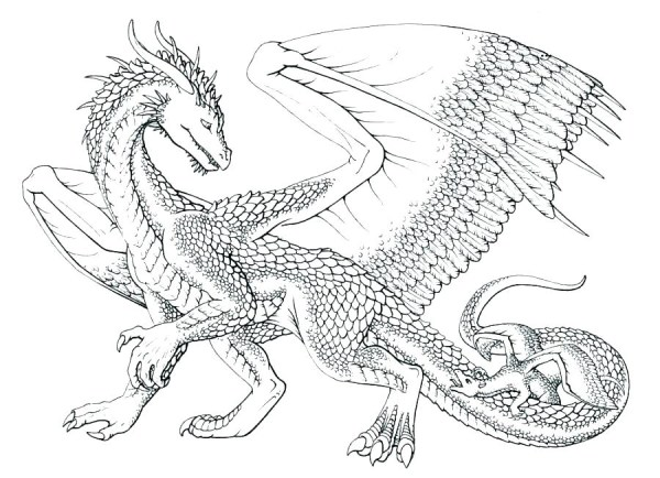coloring pages dragon # 1