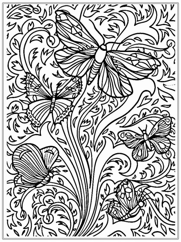 butterfly coloring pages for adults # 18