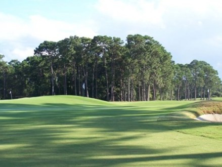 Find Brunswick  Georgia Golf Courses for Golf Outings   Golf Tournaments Golf Courses near Brunswick  Georgia