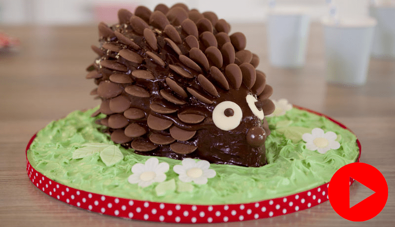 Chocolate Hedgehog Cake Recipe Easy Cake Recipe Betty