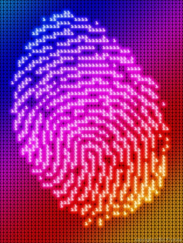 Web Security Concepts