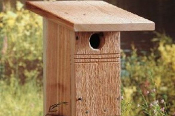 DIY Birdhouse for Bluebirds   Backyard Projects   Birds and Blooms diy birdhouse for bluebirds