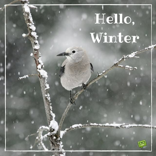 Morning Good Time Quotes Winter
