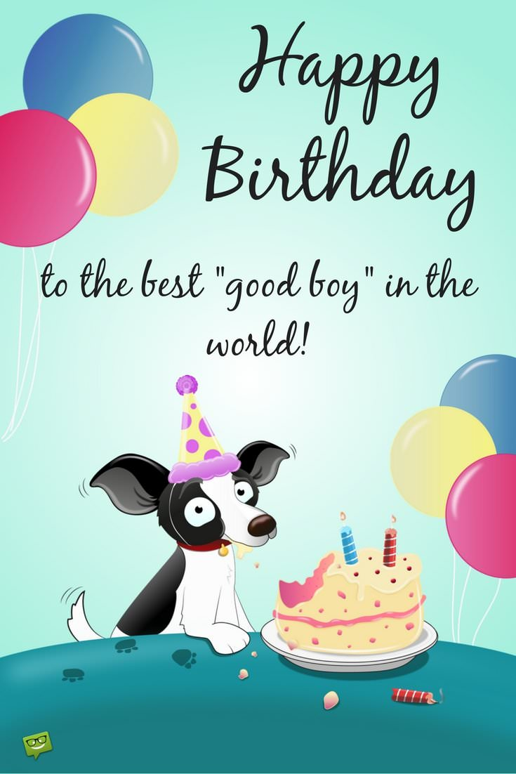 Heart Touching Cute Wishes For Your Dog S Or Cat S Birthday