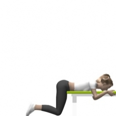Hip Extension Prone Bodyweight Only Exercise