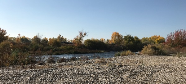 Boise River and shoreline