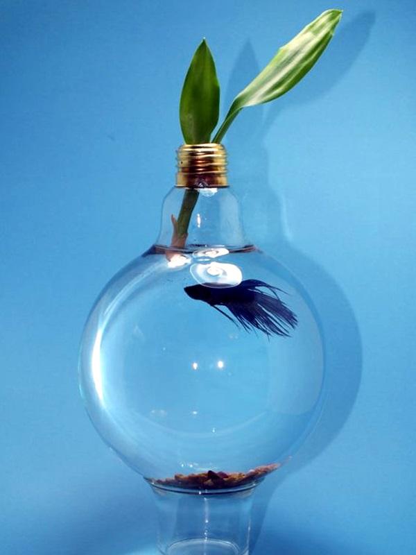 Fish Light Bulb
