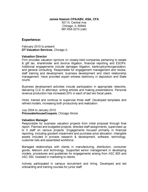 Resume Examples Executive Summary Paragraph