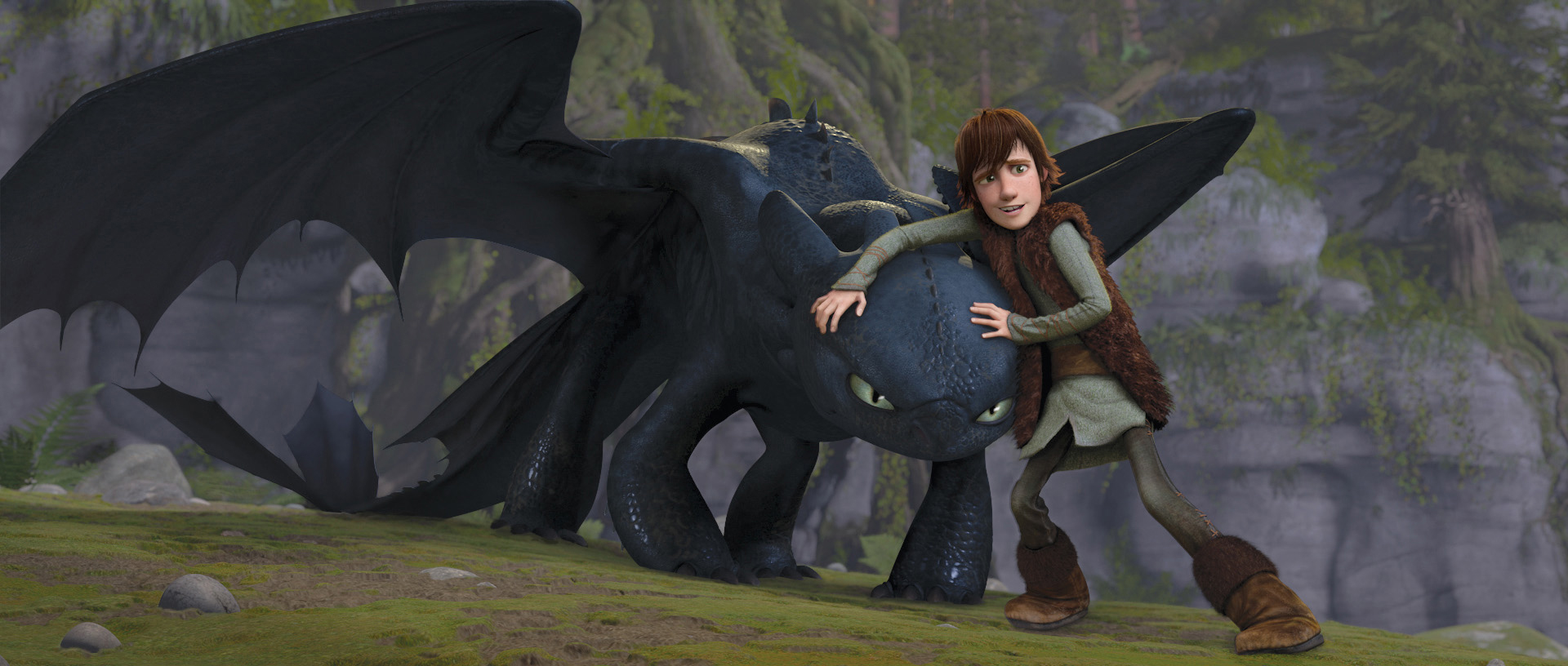 How to Train Your Dragon : Character Relationships ...