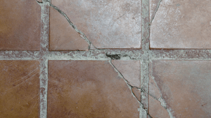 How To Hide Or Repair Cracked Tiles In Your HomeLearning