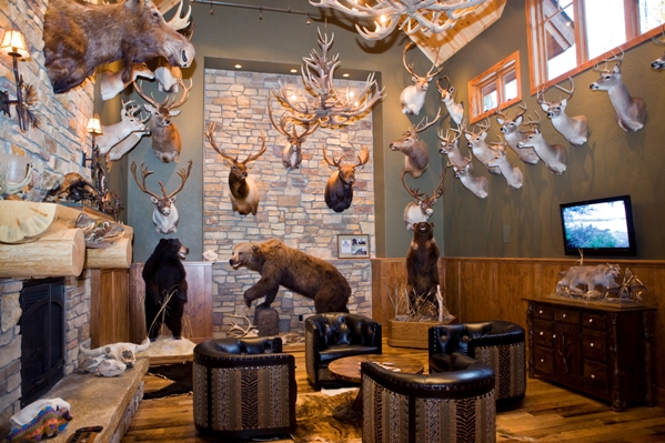 Moose Themed Home Decor