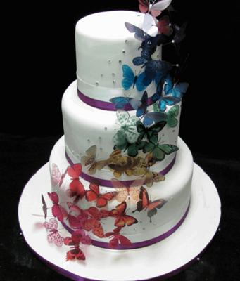 Butterfly Wedding Cakes   http   www cake decorating corner com  rainbow butterfly wedding cake