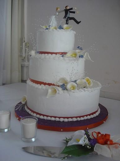 Elegant Funny Wedding Cake Jpg