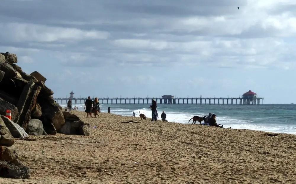 Huntington Dog Beach Huntington Beach Ca California