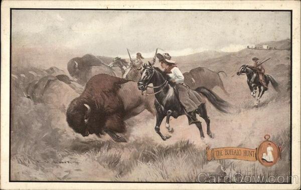 The Buffalo Hunt Cowboy Western