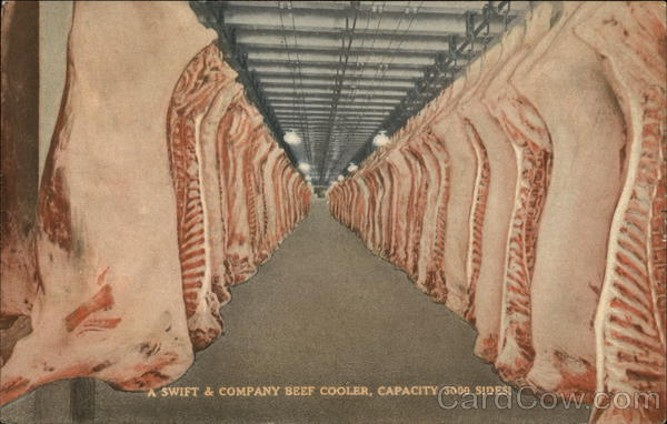 Swift And Company Beef Cooler Advertising Postcard