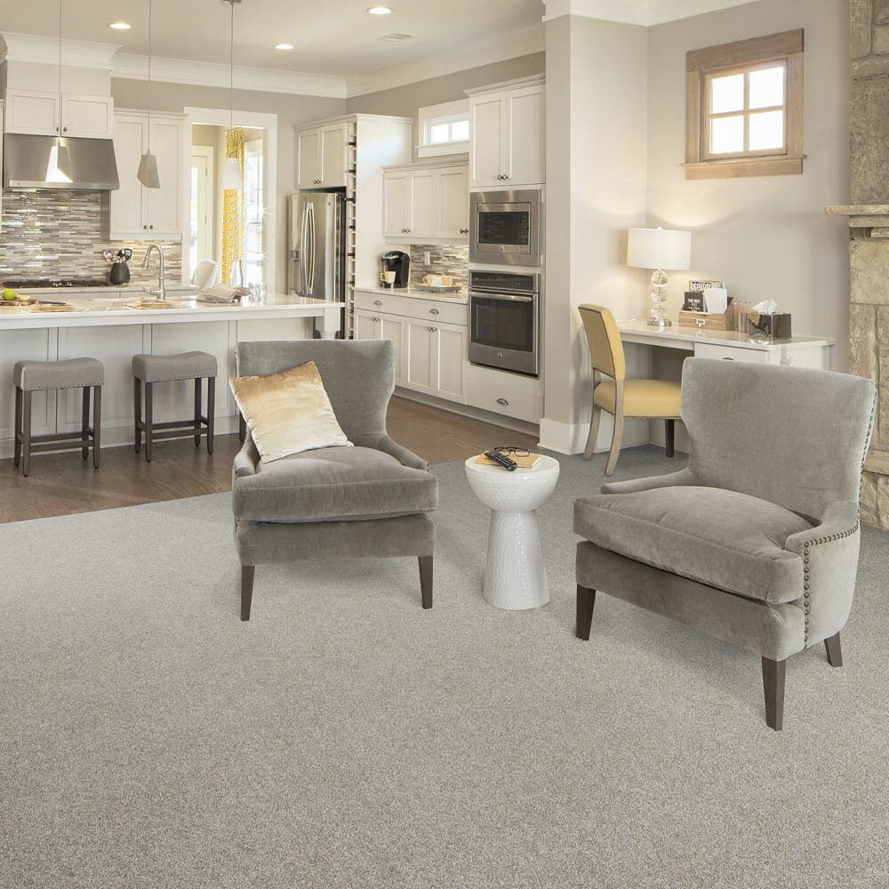 Cleaner Home Living Room Press Release Phenix   Carpet Depot AZ Phenix Brand Carpeting   Carpet Depot AZ