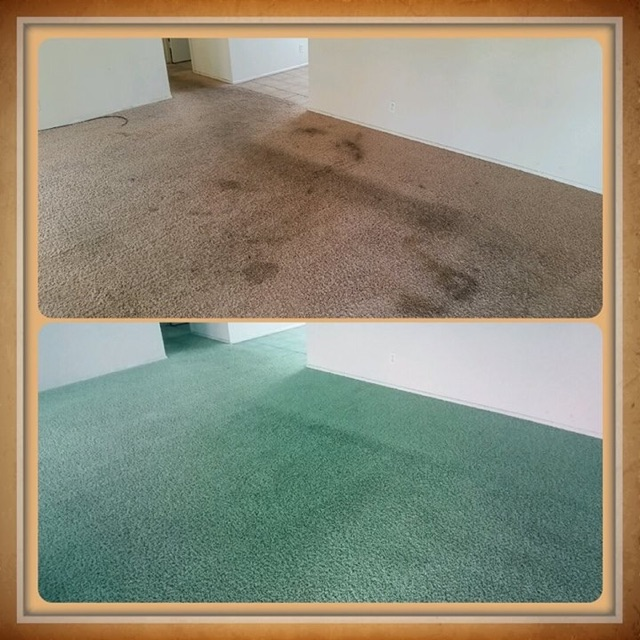 CARPET   AREA RUG DYEING   Carpet Dye Tech full room dye before and after