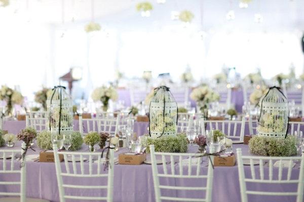 Centerpieces Weddings Bird Cage