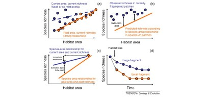 Extinction debt: a challenge for biodiversity conservation ...