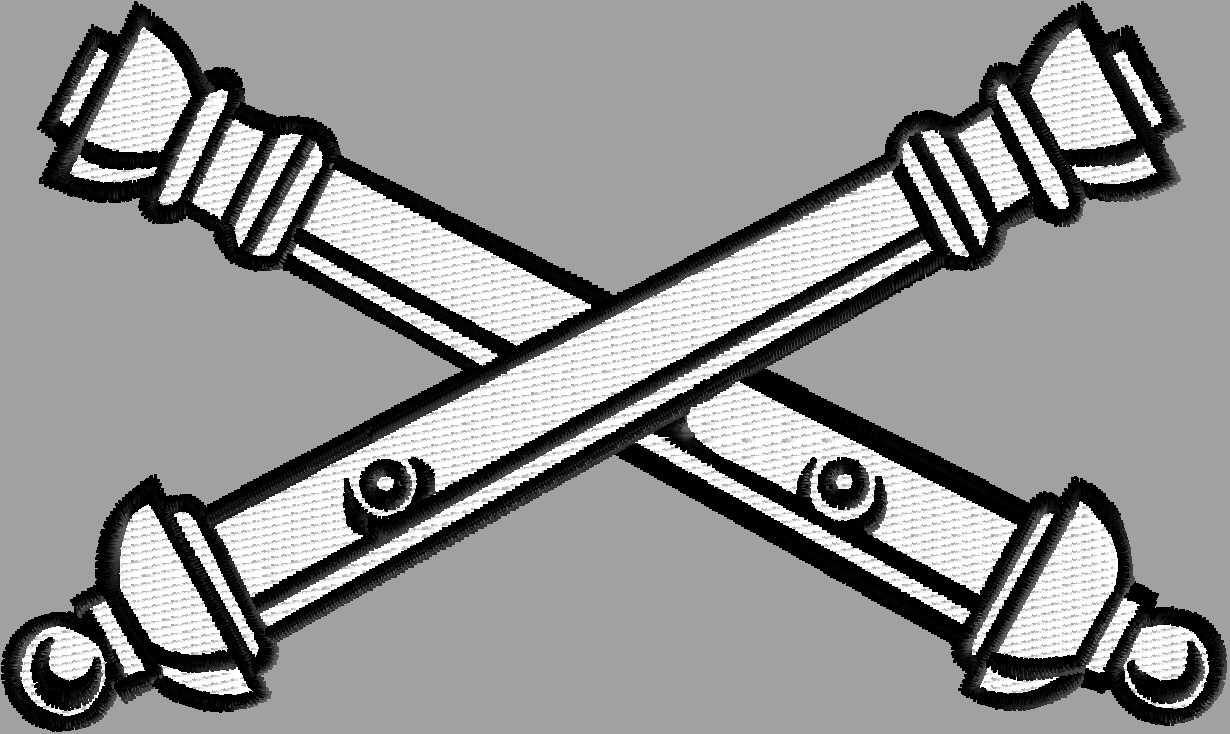 Crossed Black Cannons And White