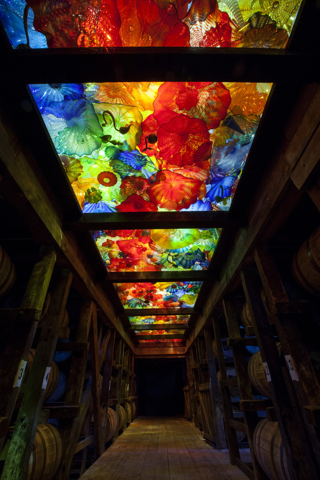 Installations Chihuly