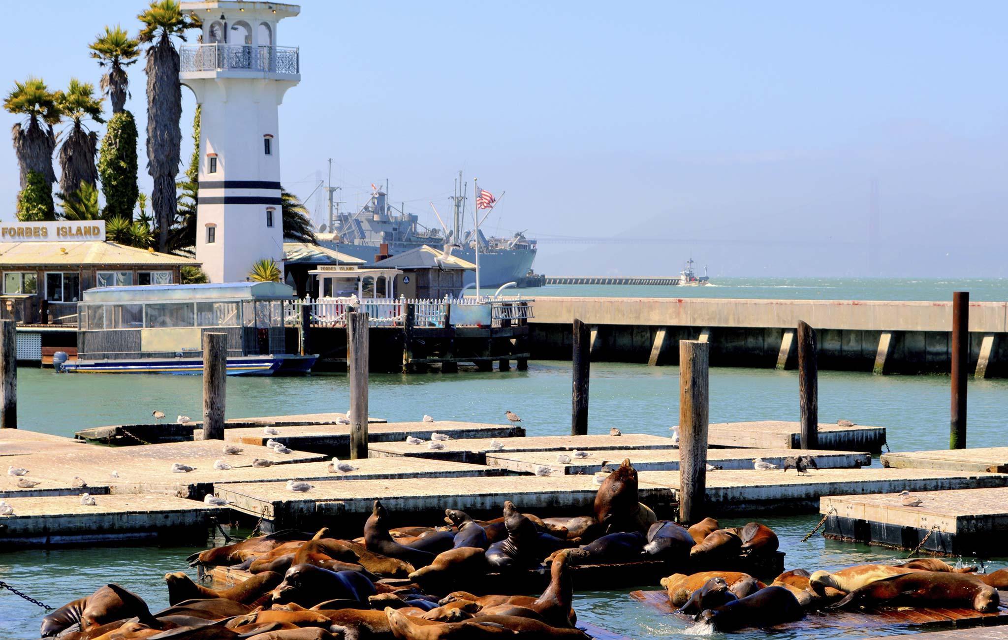 Best San Francisco Fisherman Wharf Restaurants