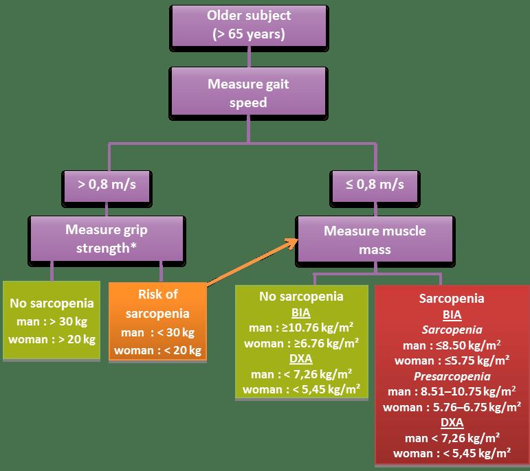 Sarcopenia : diagnosis - Citrage | Stratégies ...