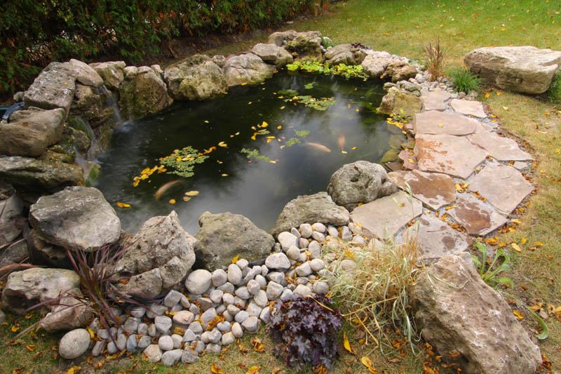 Above Ground Fish Pond