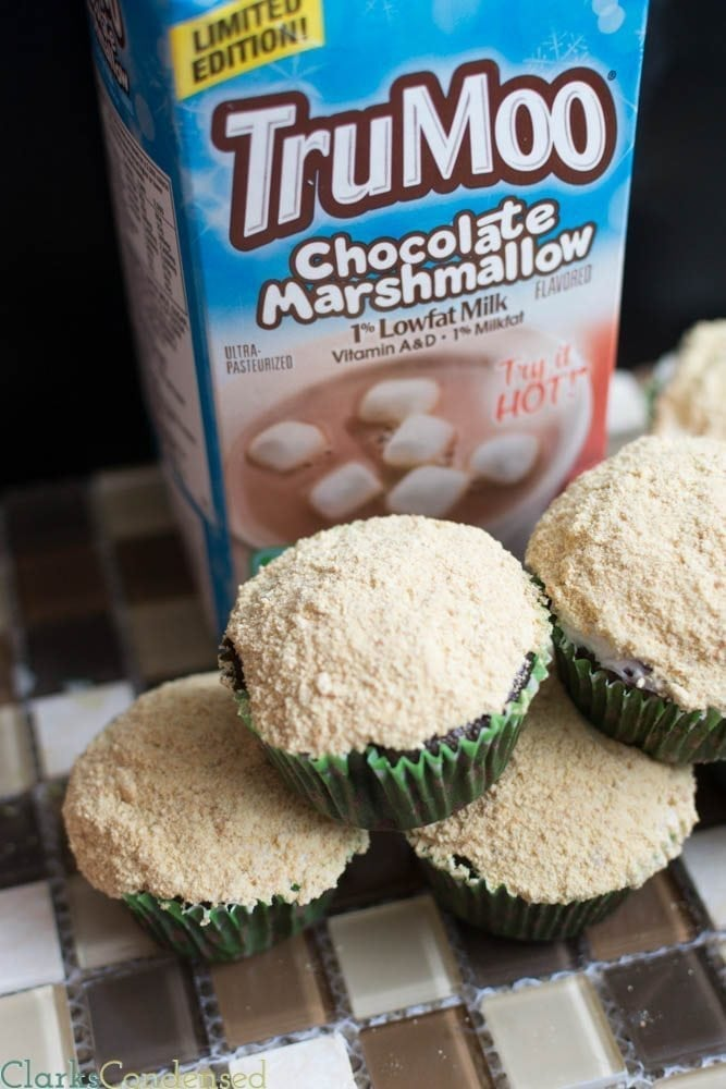 S'mores cupcakes with Whipped chocolate milk frosting and a graham cracker topping