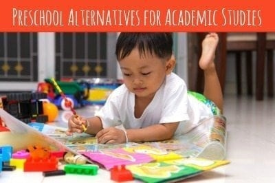 Are you worried that your child won't learn what he needs to if he doesn't go to preschool? Here are preschool alternatives that will still have him learning plenty!