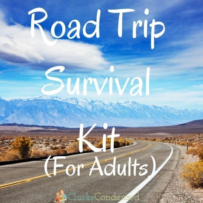 Road Trip Survival Kit