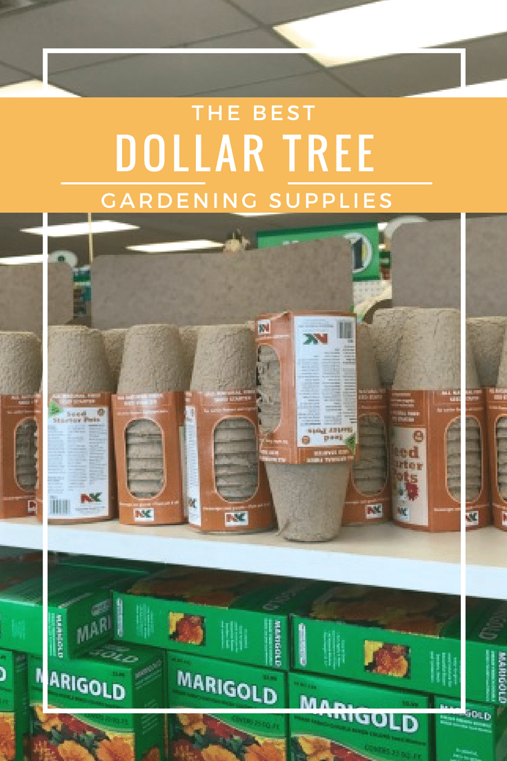 Dollar Tree / Garden / Dollar STore / Gardening Supplies / Frugal Living / Healthy Living / Plant Based via @clarkscondensed