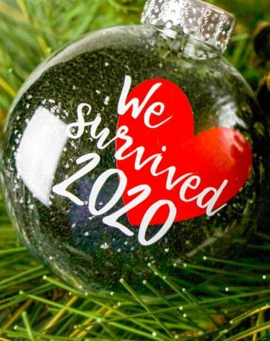DIY We Survived 2020 Ornament