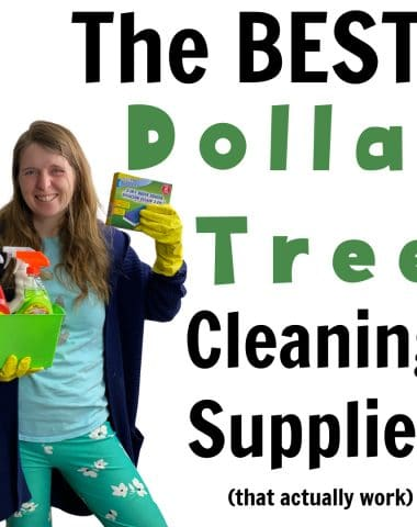 dollar tree cleaning products