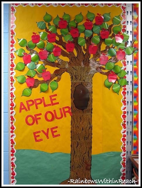 apple of our eye door