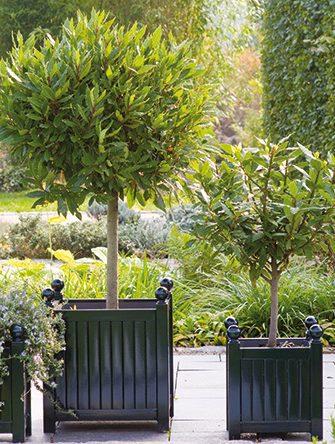 Versailles Planters Classic Garden Elements Uk