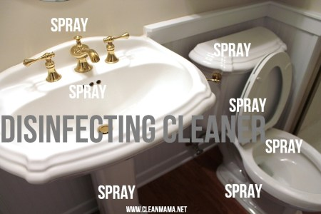 Speed Clean Your Bathrooms   Clean Mama Step Two Spray Sink and Tubs and Toilet with Disinfecting Cleaner