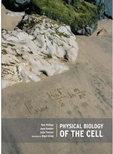 Physical Systems Physics
