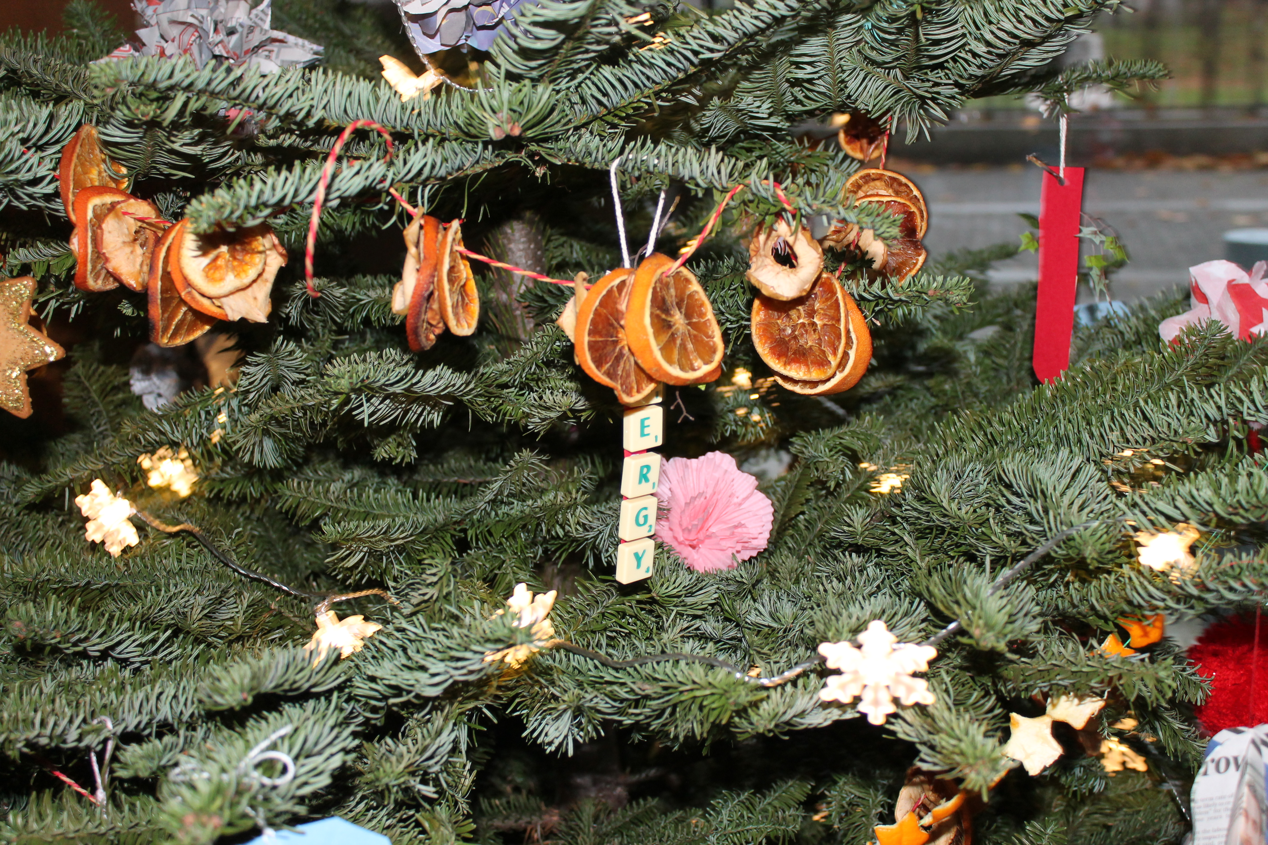Think Energy Sustainable Christmas Stand Energy