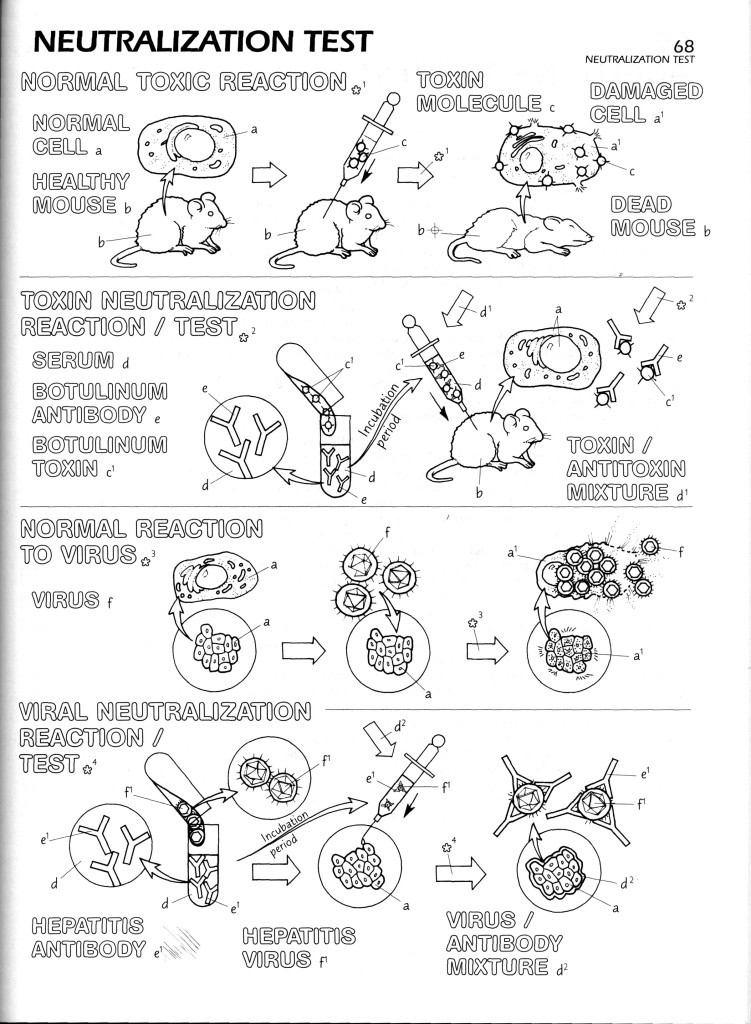 Emejing The Microbiology Coloring Book Images New Pages