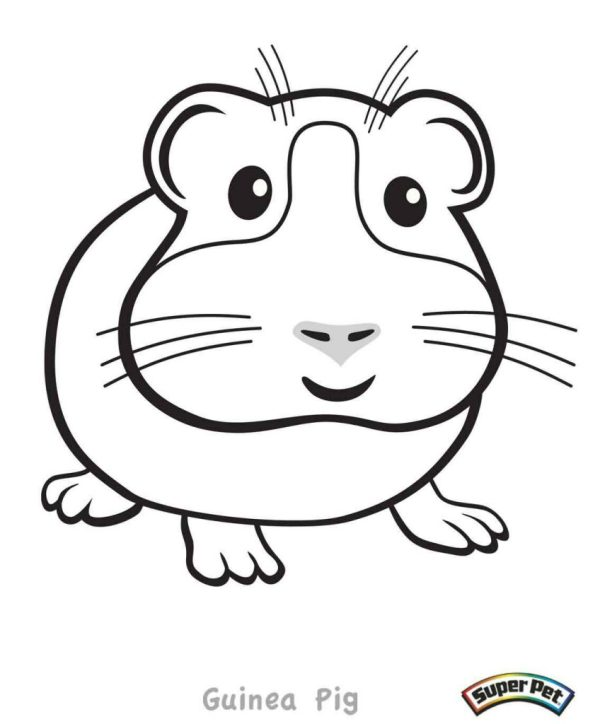 guinea pig coloring page # 10