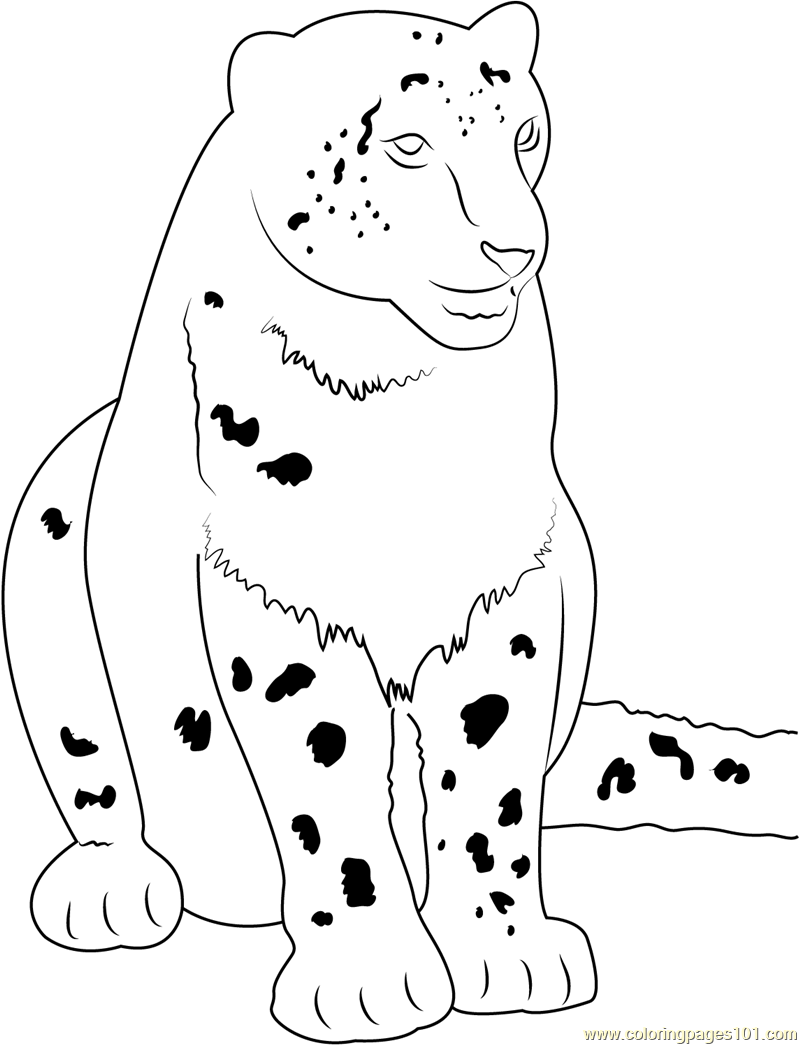 Cute Snow Leopard Coloring Page Free Snow Leopard Coloring Pages