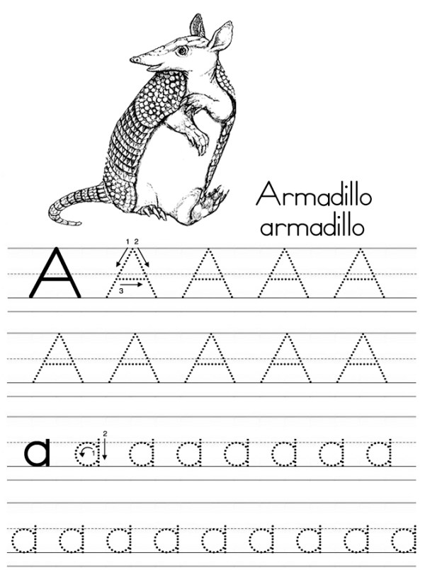 armadillo coloring page # 70
