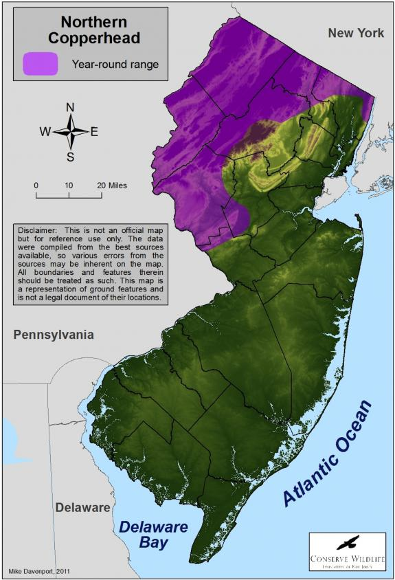 Wildlife Field Guide for New Jersey's Endangered and ...