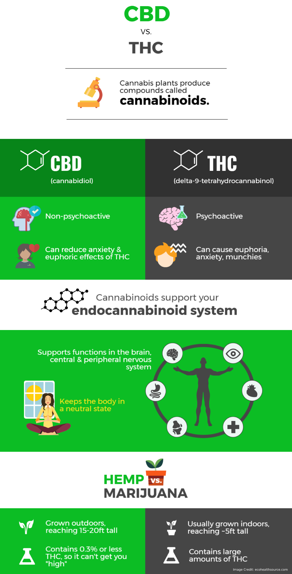 Where Does Thc Come