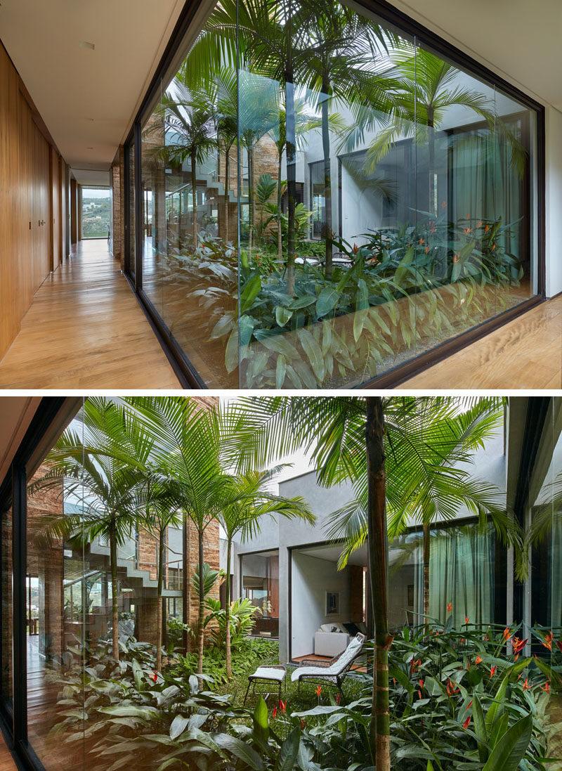Large Office Plants