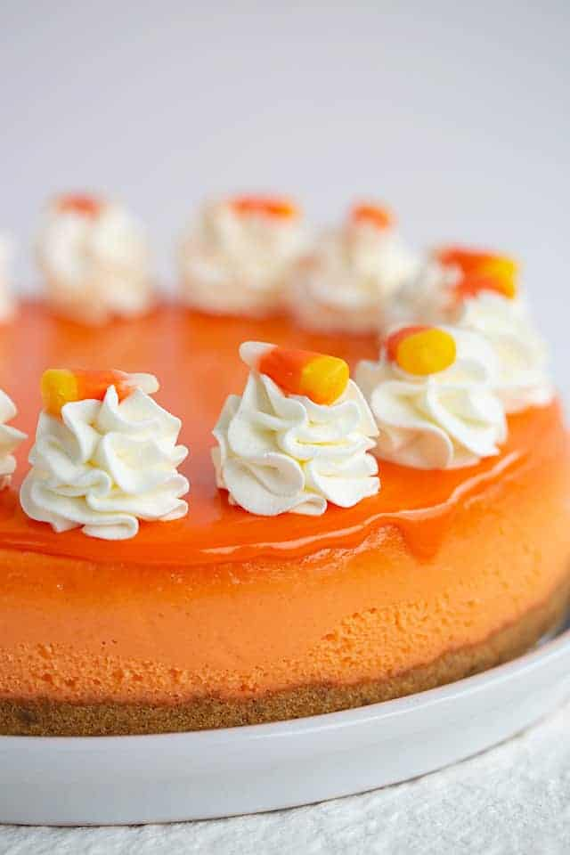 whole candy corn cheesecake on a white plate with whipped cream and candy on top